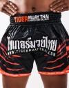 "Muay Thai Shorts - ""Tiger Stripes"" - Black & Orange"
