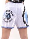 "Muay Thai Shorts - ""Signature"" - White & Orange"