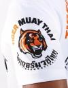 """T-Shirt -  """"Evolution TMT"""" - 1stDry - White"""